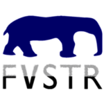 FVSTR Coupons & Promo Deals